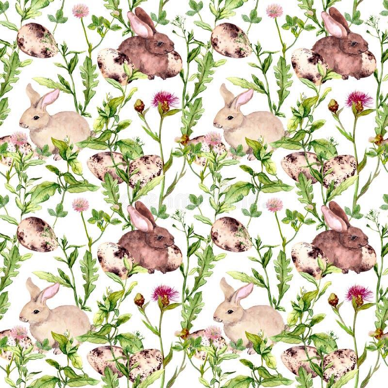 Зайчик пасхи с яичками в траве и цветках Безшовная флористическая картина пасхи акварель иллюстрация штока