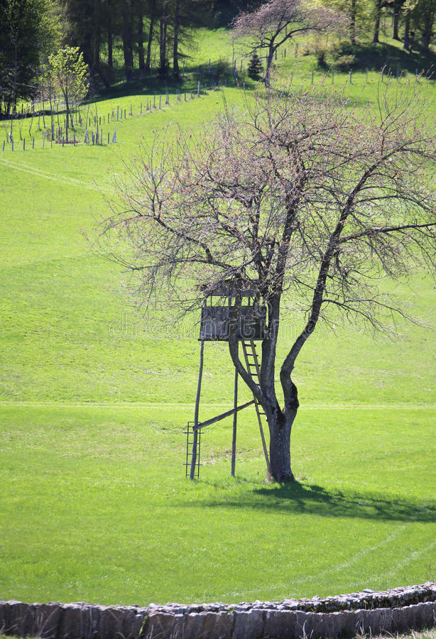 закамуфлированная деревянная хата для охотиться над башней стоковая фотография