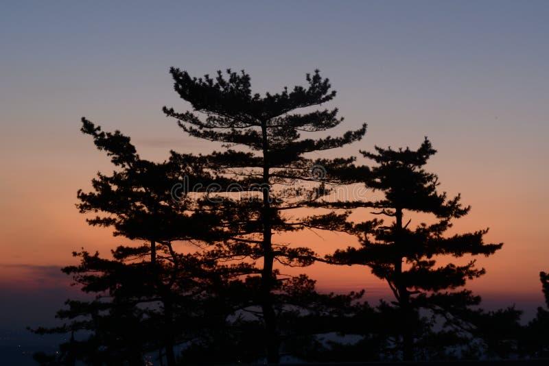 Закат солнца в Белграде стоковая фотография