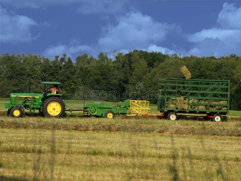 закладывать сено стоковая фотография rf