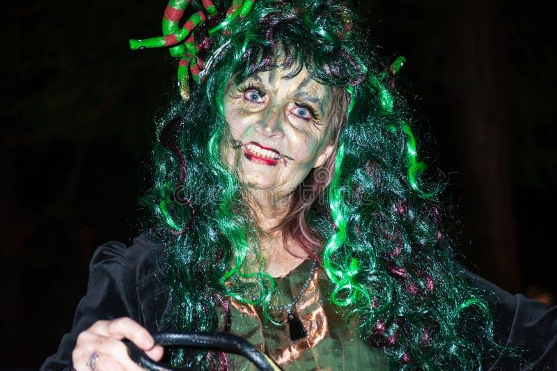 Заклинатель змей на хеллоуине стоковое изображение rf