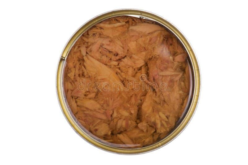 законсервированная ая туна масла стоковое изображение