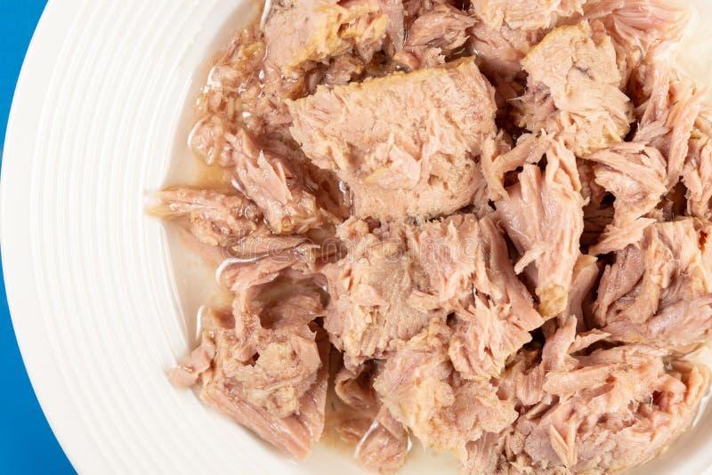 Законсервированные куски мяса тунца, который служат на белой плите стоковые изображения rf