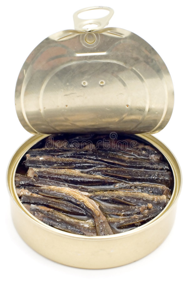 законсервированные рыбы стоковая фотография
