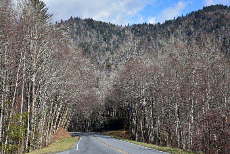 Закоптелый ландшафт обочины гор стоковое изображение