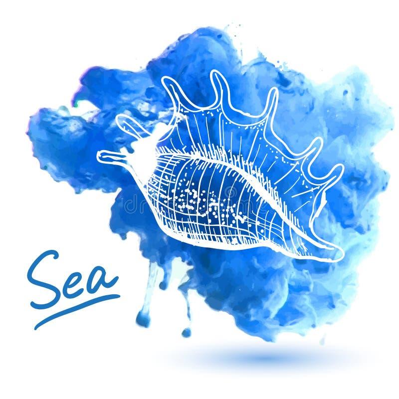 закрепляя изолированная белизна раковины моря путя бесплатная иллюстрация