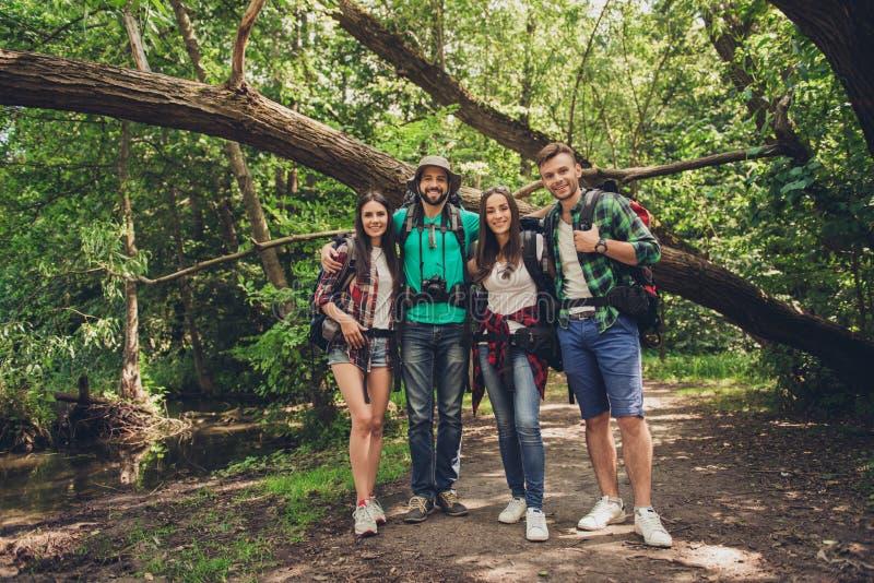 Закройте вверх 4 жизнерадостных друзей в древесине лета славной Они hikers, идя и выбирая место для располагаться лагерем, обнима стоковое фото rf