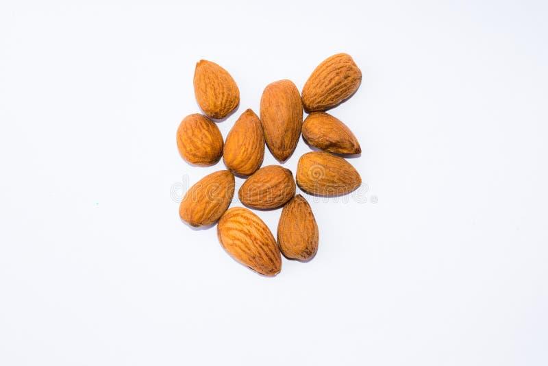 Закройте вверх коричневых семян миндалин изолированных на белой предпосылке стоковое изображение rf