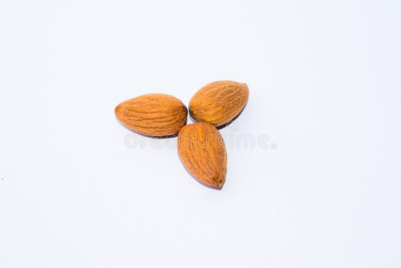 Закройте вверх коричневых семян миндалин изолированных на белой предпосылке стоковая фотография