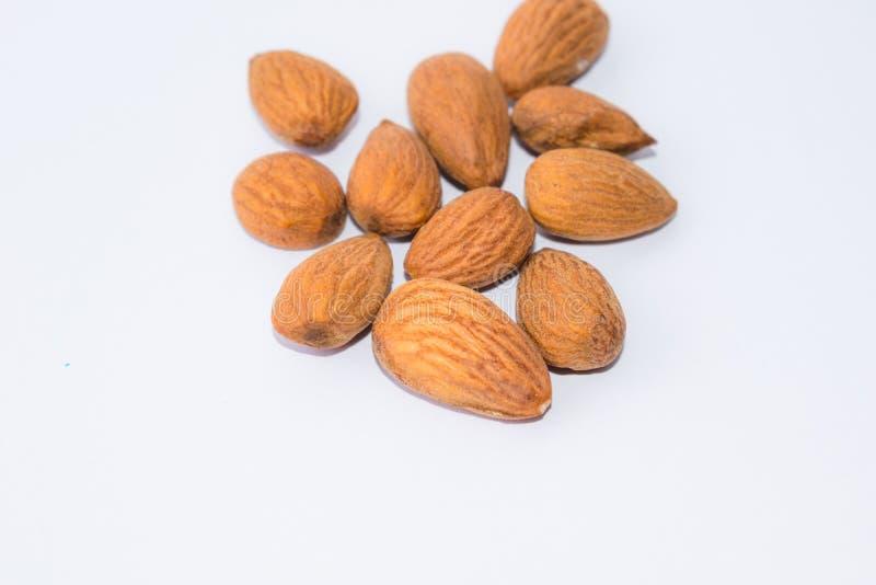 Закройте вверх коричневых семян миндалин изолированных на белой предпосылке стоковые изображения rf