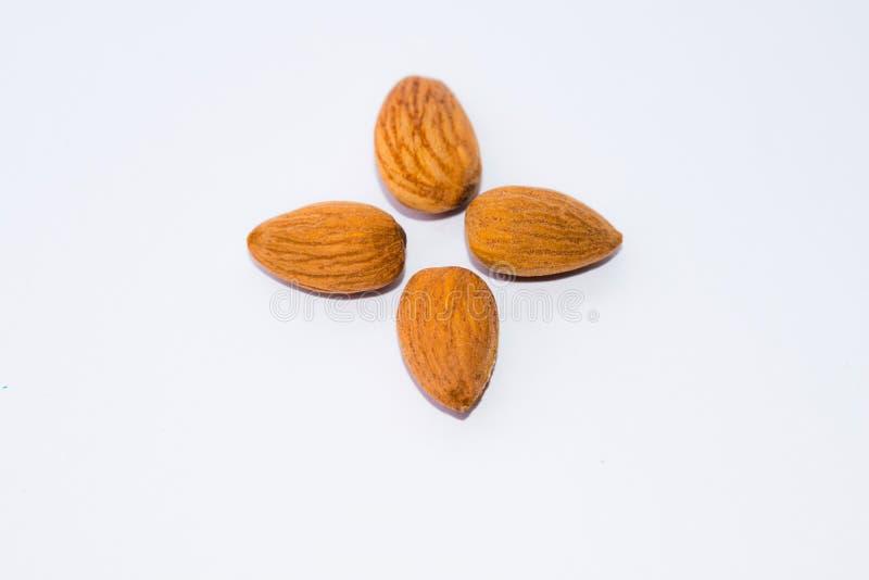 Закройте вверх коричневых семян миндалин изолированных на белой предпосылке стоковые изображения