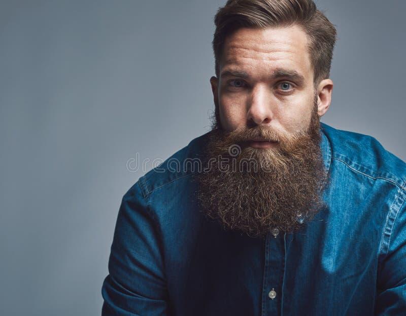 Закройте вверх на серьезном человеке в голубых рубашке и бороде стоковое фото
