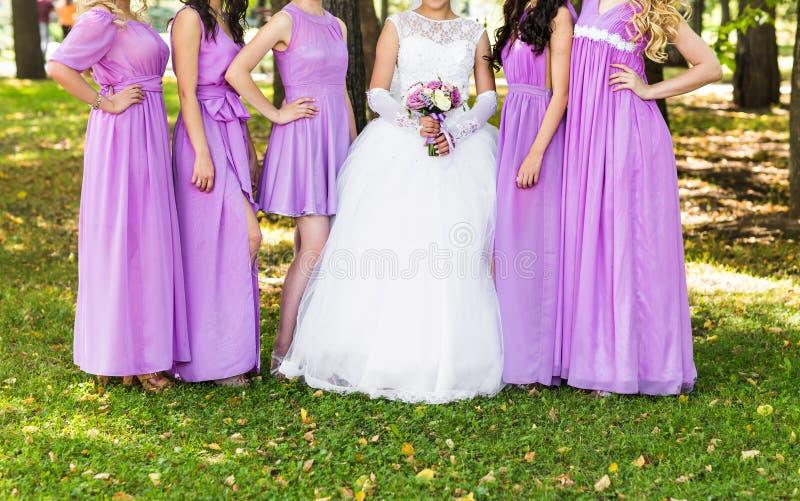 Закройте вверх невесты и bridesmaids стоковое фото rf