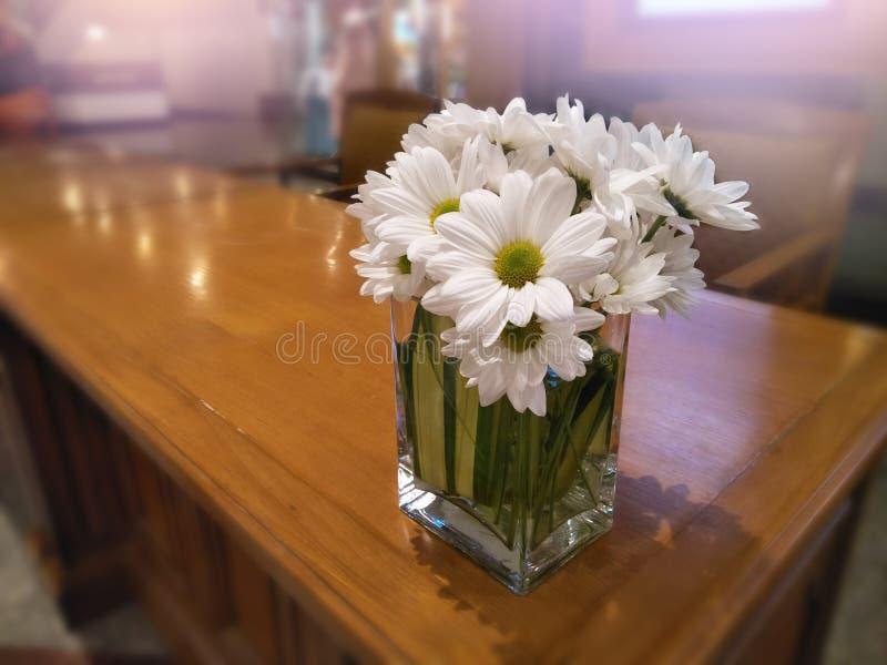 Закройте вверх по букету маргаритки в вазе на таблице для декоративной комнаты и внутреннем, белом цветке в приемной гостиницы стоковое фото rf