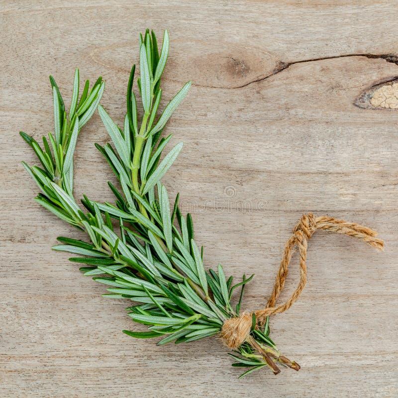 Закройте вверх по ветви свежего розмаринового масла для приправляя концепции на rusti стоковое изображение rf