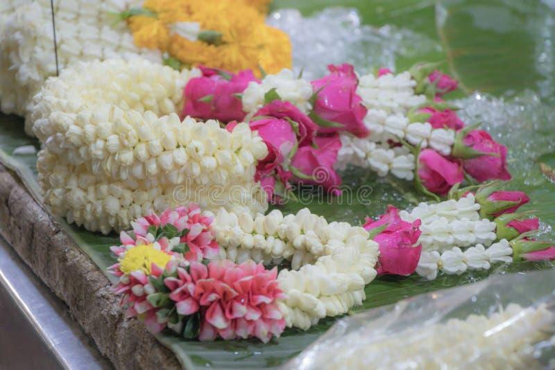 Закройте вверх по жасмину выборочного фокуса и поднял гирлянда цветков r стоковое изображение