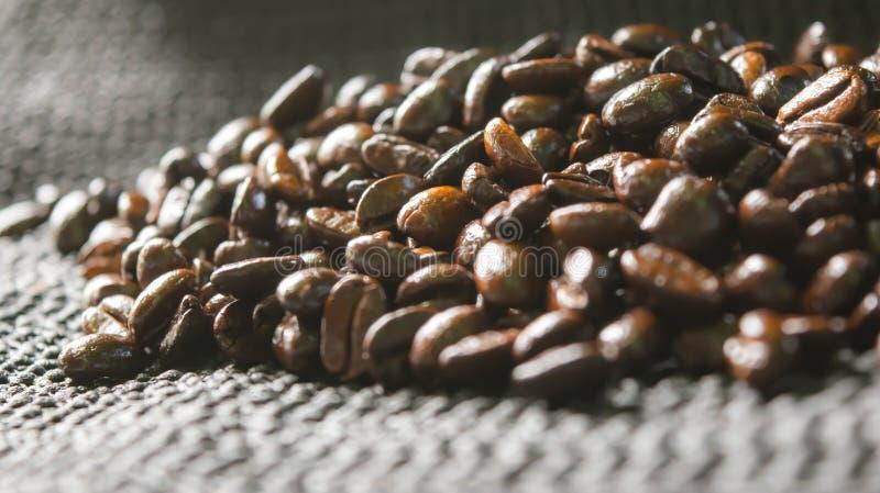 Закройте вверх по зажаренным в духовке кофейным зернам и предпосылке солнечного света в утре стоковая фотография rf