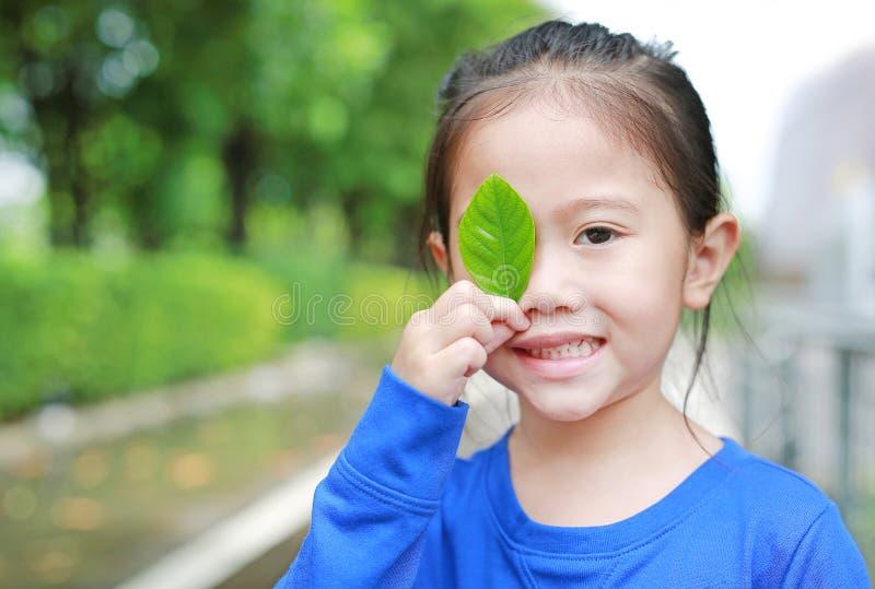 Закройте вверх по меньшей азиатской девушке ребенка держа зеленые лист закрывая правый глаз в зеленой предпосылке сада стоковые изображения rf