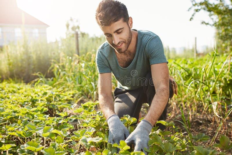 Закройте вверх по портрету outdoors зрелого привлекательного бородатого мужского фермера в голубой футболке усмехаясь, работая на стоковое фото