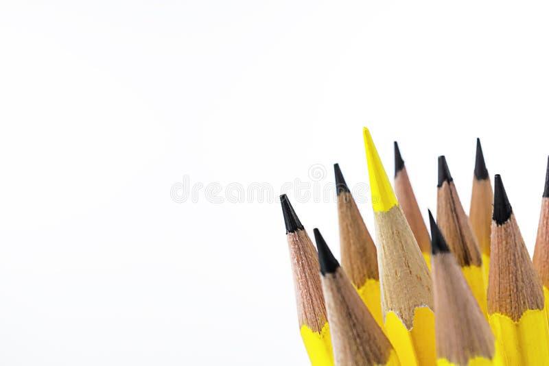 Закройте вверх по пункту желтого penceil цвета стоковые изображения