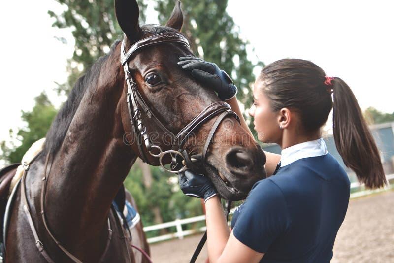 Закройте вверх по рукам женщины жокея обнимая лошадь Маленькая девочка petting ее лошадь в конюшне Equine концепция терапией Любо стоковые изображения
