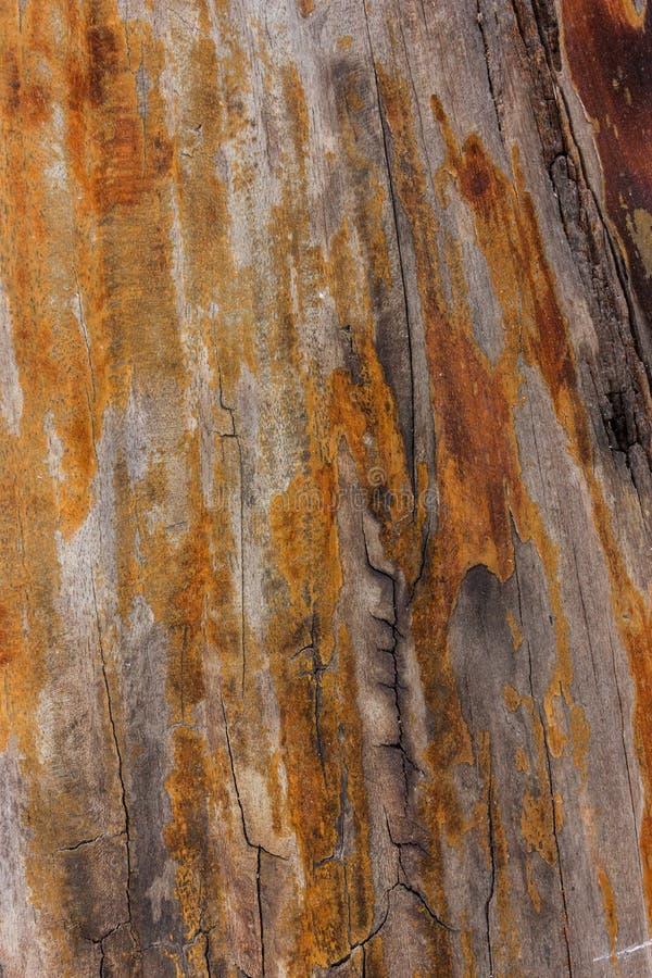 Закройте вверх по старой деревянной предпосылке текстуры таблицы стоковое фото