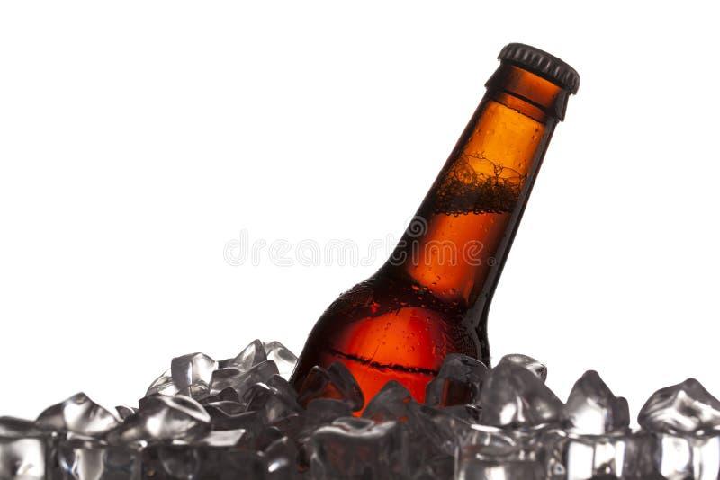 Закройте вверх по съемке бутылки пива и кубиков льда стоковое фото