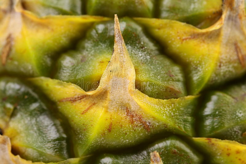 Закройте вверх по текстуре свежего зрелого ананаса. Макрос. стоковые изображения