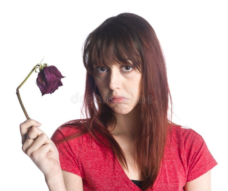 Закройте вверх по унылой женщине держа цветок умерших розовый стоковая фотография