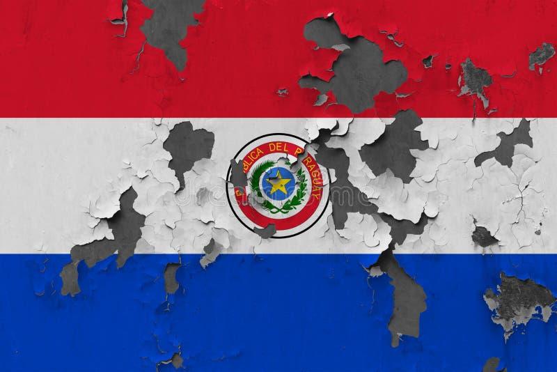 Закройте вверх по grungy, поврежденному и выдержанному флагу Парагвая на стене слезая с краски для того чтобы увидеть внутри пове иллюстрация штока