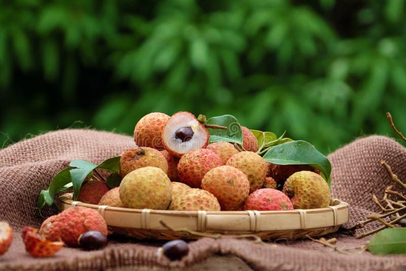 Закройте вверх плодоовощ litchi стоковые фотографии rf