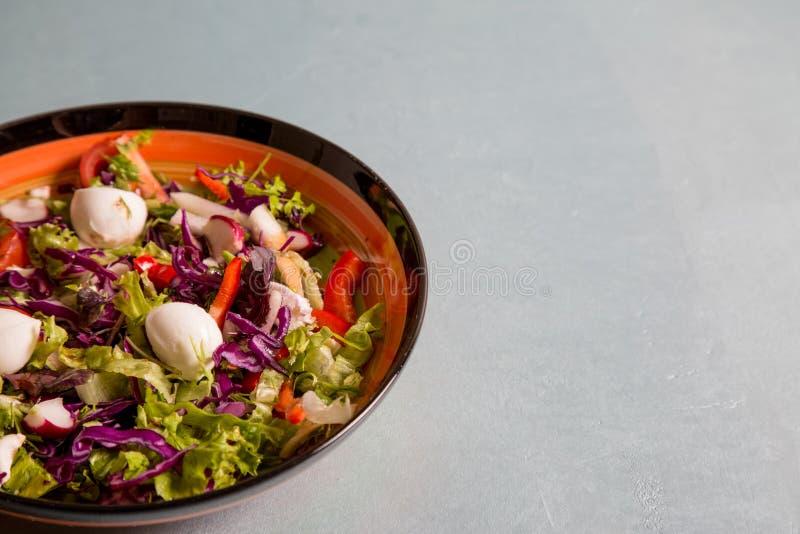 Закройте вверх свежего салата салата, редиски, томата и сыра mozarella на плите для здоровой еды стоковые фотографии rf