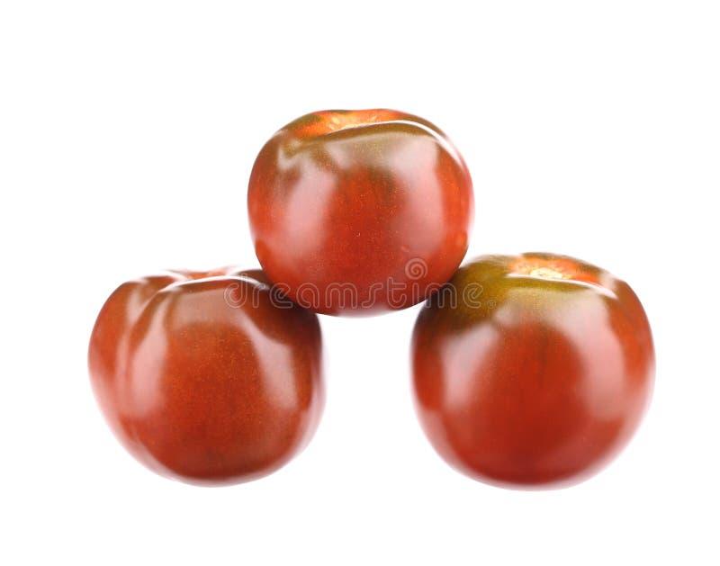 закройте вверх томатов стоковые фотографии rf