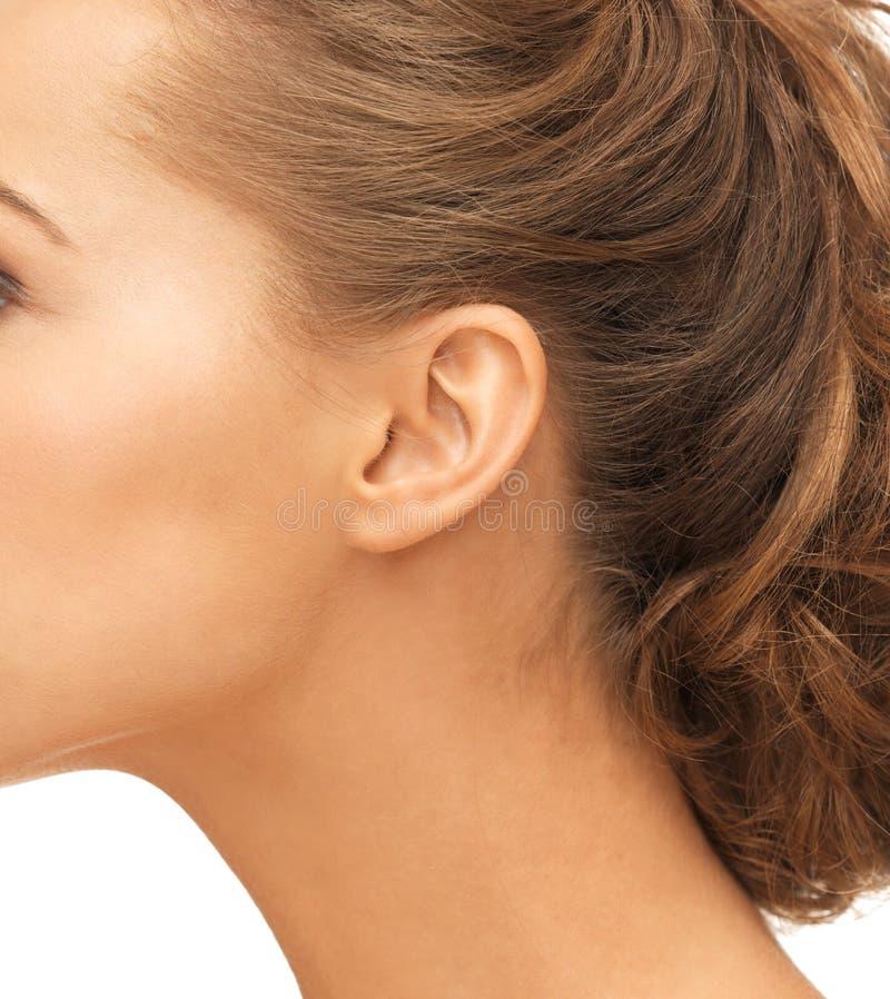 Закройте вверх уха женщины стоковые фотографии rf