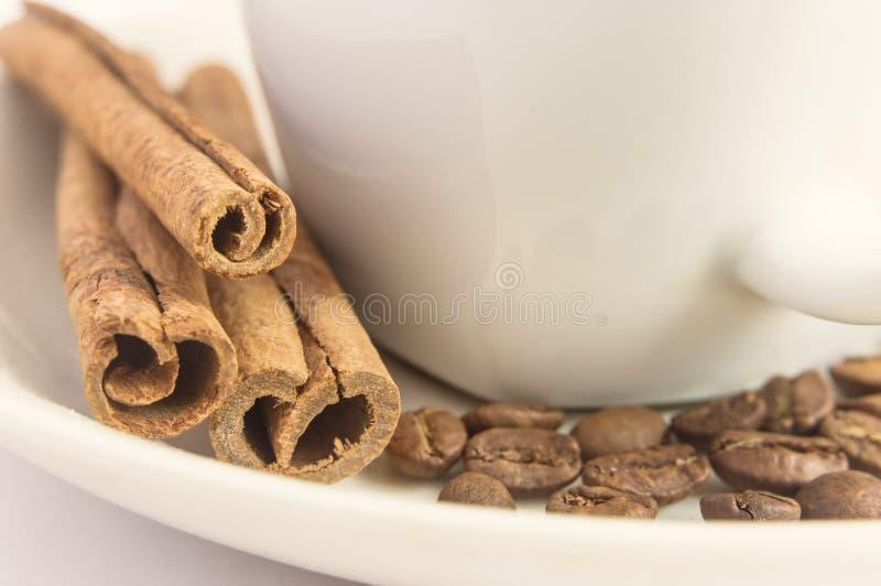 Закройте вверх душистых ручек циннамона, кофейных зерен и белой чашки стоковое фото