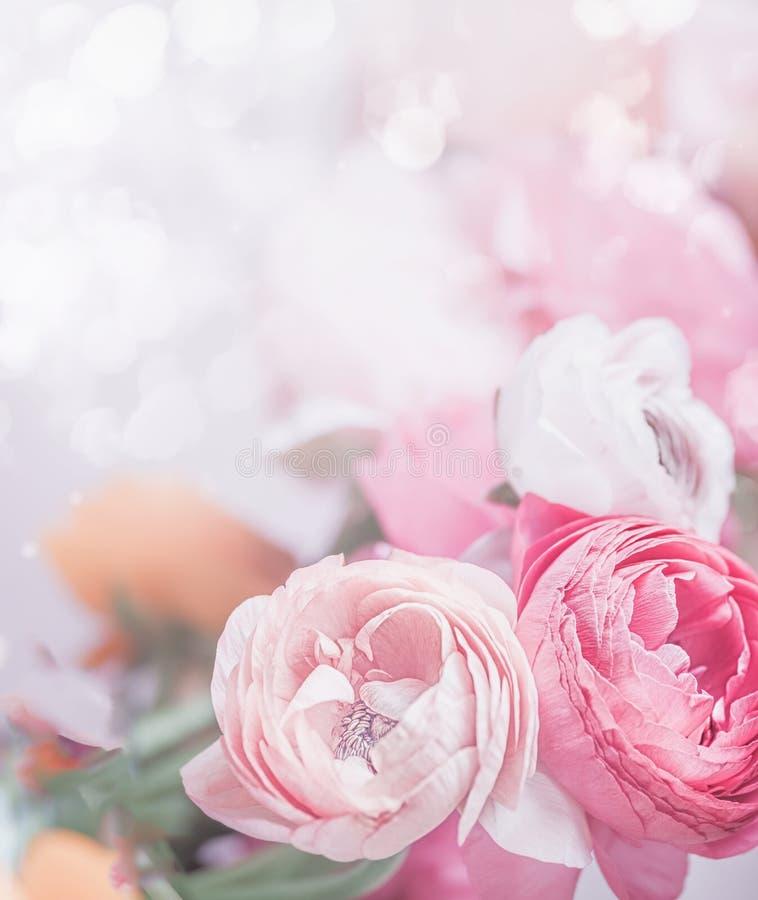 Закройте вверх цветков пастельного пинка на предпосылке bokeh Праздничное приветствие стоковая фотография