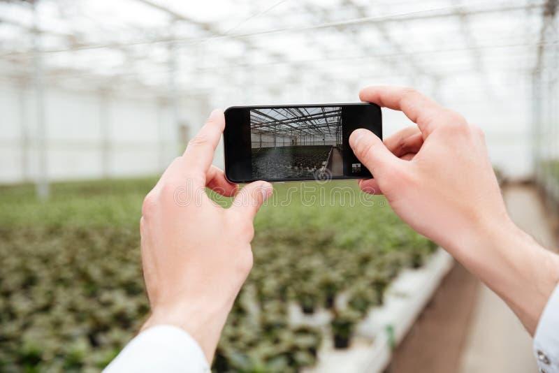 Закройте вверх человека делая фото из растительности стоковые изображения rf