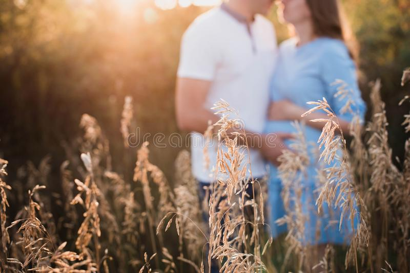 Закройте вверх человеческих рук держа беременный живот, семью крупного плана счастливую ожидая младенца, стоя на зеленой траве, ч стоковое изображение