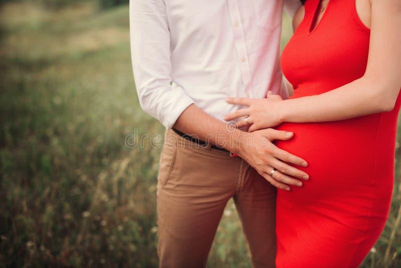 Закройте вверх человеческих рук держа беременный живот, семью крупного плана счастливую ожидая младенца, стоя на зеленой траве, ч стоковое фото
