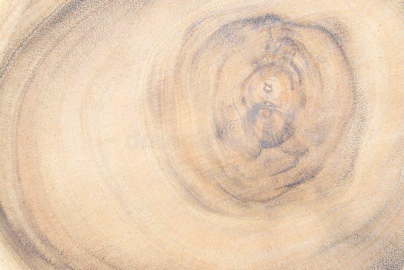 Закрытие участка дерева конечной срезанной древесины Деревянное дерево срежет поверхность Детально теплые коричневые и оранжевые  стоковые изображения rf