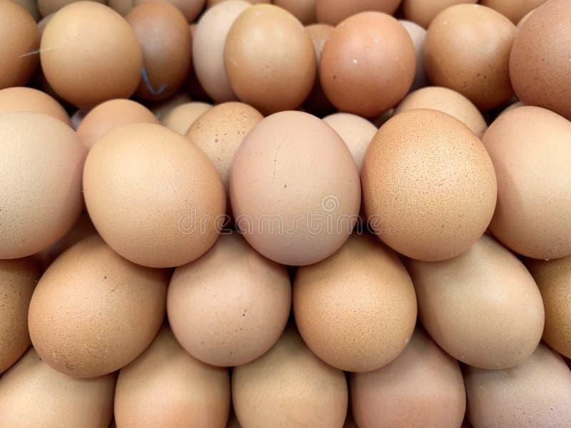Закрытый вверх по изображению много свежий класть яя курицы или цыпленка совместно, органические яйца стоковые фотографии rf