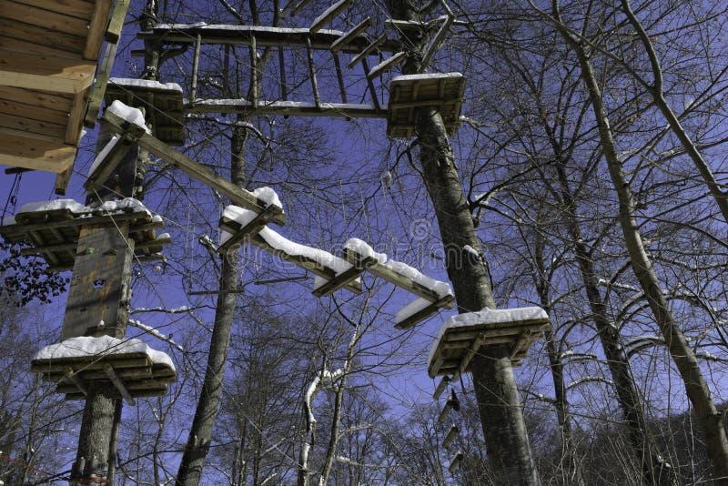 Закрытый снег покрыл спортзал джунглей стоковая фотография