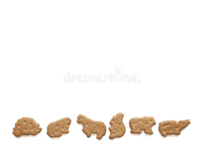 Закуска еды потехи животных печений младенца для детей на белой предпосылке Свойственная еда детей Домодельный варить Безопасная  стоковая фотография