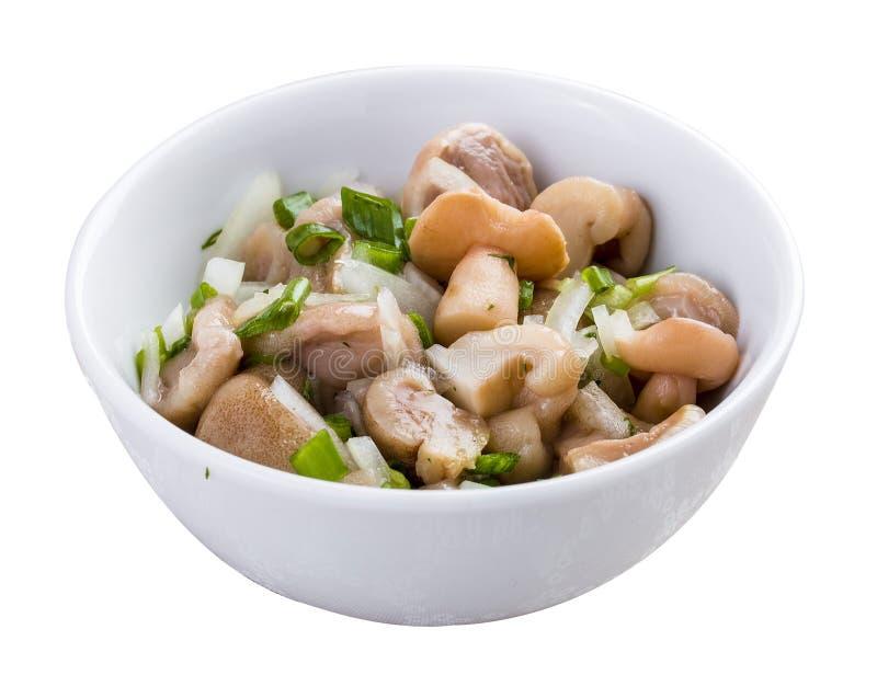 Закуска от замаринованных грибов стоковое фото