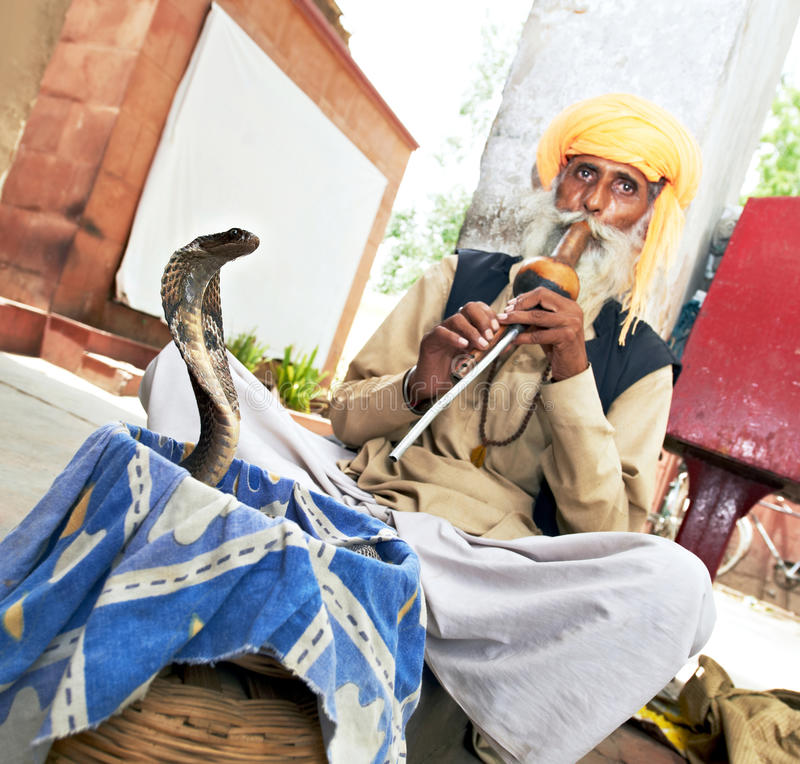 Заклинатель змей Индии стоковое изображение rf
