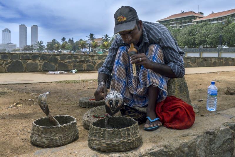 Заклинатель змей рядом с Галле смотрит на зеленый цвет в Коломбо, Шри-Ланке стоковое изображение rf