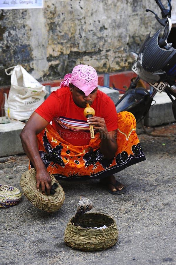 Заклинатель змей Шри-Ланки стоковое изображение rf
