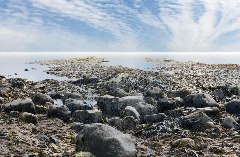 Залив Великобритании Kimmeridge побережья Дорсета стоковое фото rf