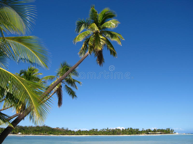 залив Фиджи стоковое фото