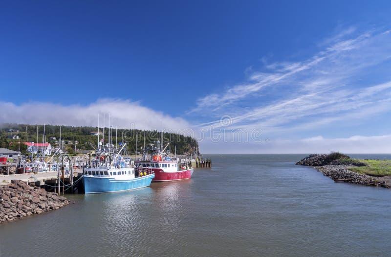 Залив Fundy, Ньюа-Брансуик, Канады стоковые фото